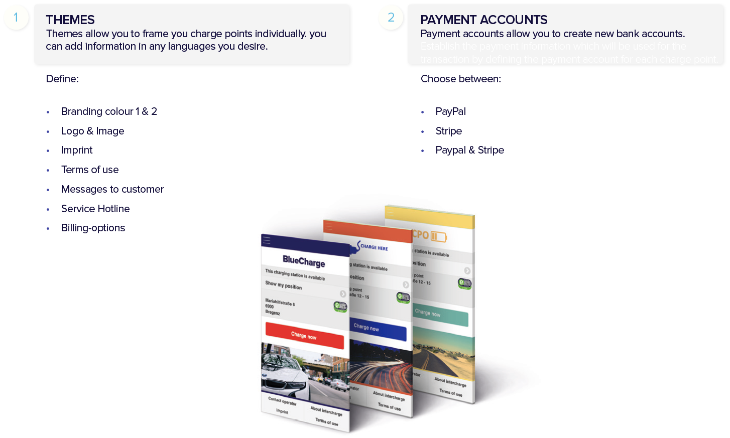 themes_and_payment_accounts.PNG